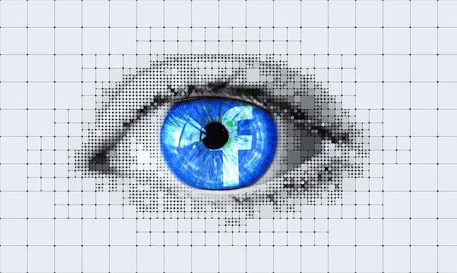 facebook-vision